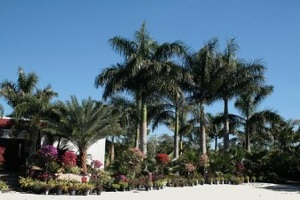 Beat the Summer Heat South Florida with an Inviting
