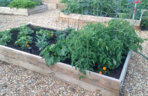 Community Vegetable Garden Installation in Fort Lauderdale