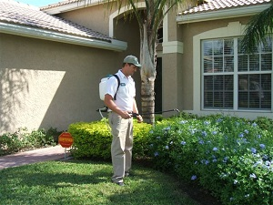 Pest Control Service in Fort Lauderdale, Florida